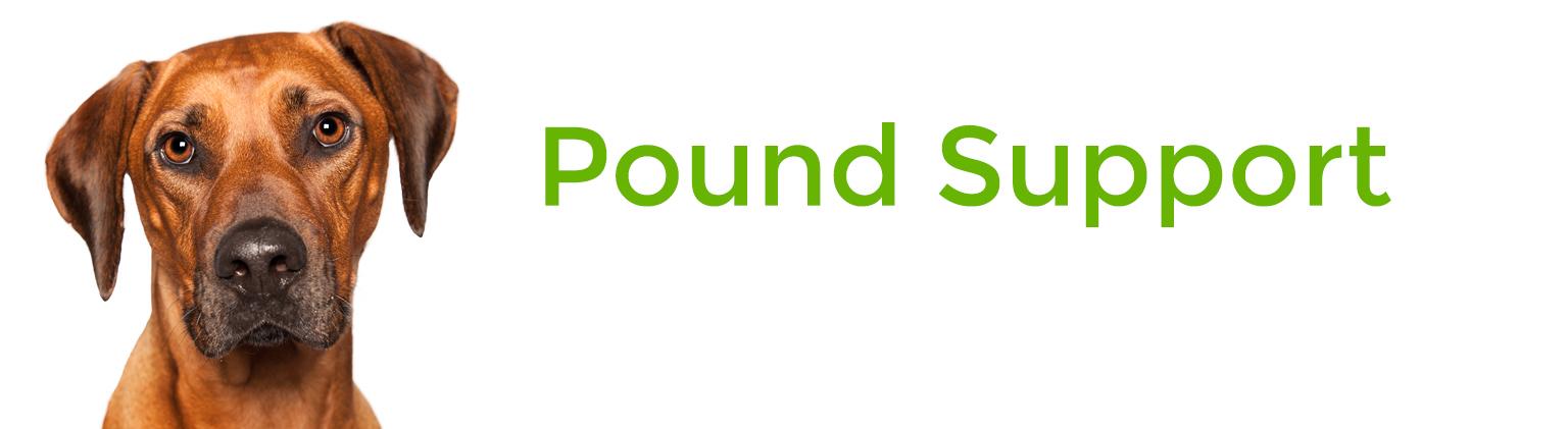 Pound Support