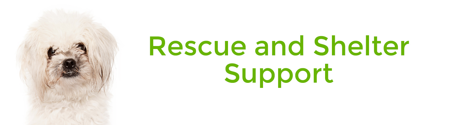 Rescue and Shelter Support